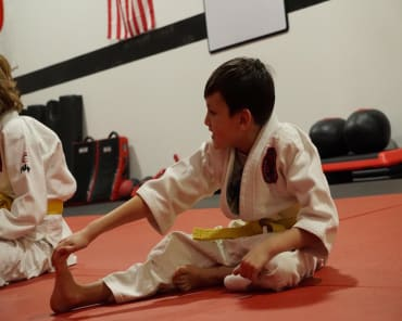Kids Martial Arts in Lake in the Hills  - Tactical Mixed Martial Arts