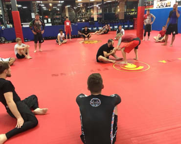 Mixed Martial Arts  in Homewood - Spartan Fitness