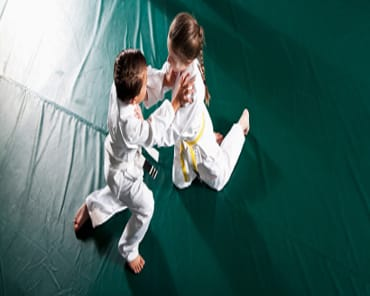 Kids Martial Arts Ann Arbor