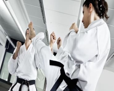 Adult Martial Arts in Palmetto - Jurassic Martial Arts + Fitness