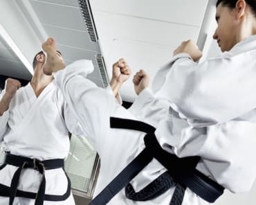 Adult Martial Arts in Kansas City - Self Defense Global