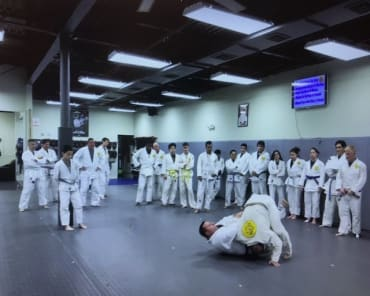 adult bjj martial arts nanuet