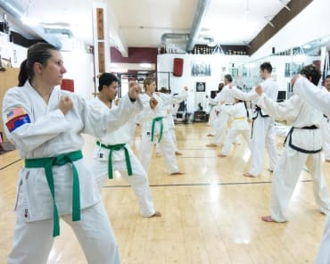 Adult Martial Arts in Davie and Cooper City - Traditional Taekwon-Do Center Of Davie