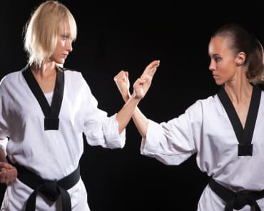 Adult Martial Arts in Shelby Township - D-Lux Karate University