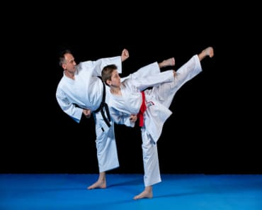 Family Martial Arts  in Shelby Township - D-Lux Karate University