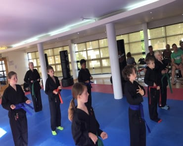 Family Martial Arts  in Wandsworth - BMS WooShoo