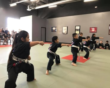 Kids Martial Arts Tracy