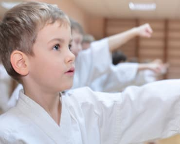 kids martial arts in hudson