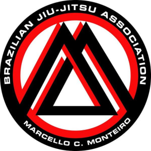 students in Brazilian Jiu Jitsu in Marrickville - Zeus International Martial Arts Academy