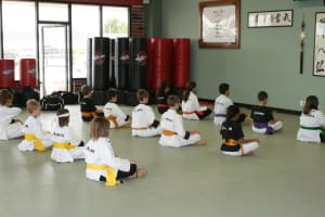 students in kids martial arts  in Bellevue - American Academies of Martial Arts