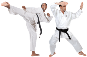 students in Adult Martial Arts in Lake Orion - Pro Martial Arts - Lake Orion