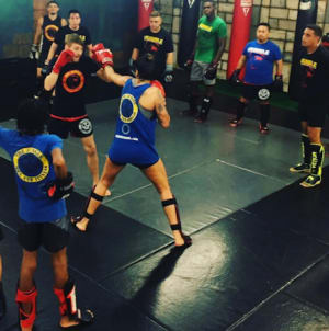 students in mma  in Orlando - The Jungle MMA And Fitness