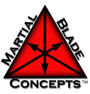 students in martial blade concepts  in Long Island - Protection Fitness
