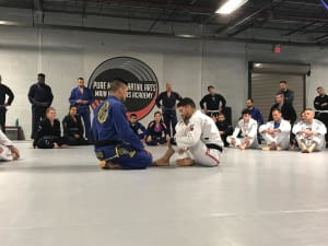 students in brazilian jiu jitsu in Rockaway - Pure Mixed Martial Arts