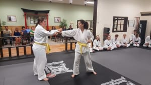 students in adult karate in St. Louis - Dave Hanson's Gateway Karate