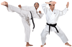 students in adult martial arts  in Bryn Mawr - PRO Martial Arts Bryn Mawr