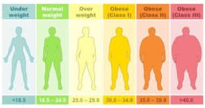 The BMI: Easy to do, but not the best method for all.