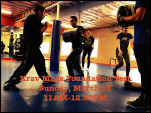 in Chicago - Ultimate Martial Arts