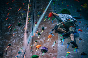 The Importance of Hands (In Climbing)