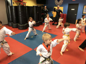 Tigers Martial Arts Class (5-7 years old)