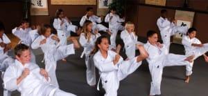 in Lafayette - Champagne's Martial Arts