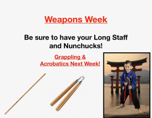 Kids Martial Arts in Houston - Meyerland Martial Art Center - Weapons Week!