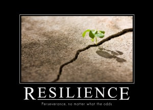 in Fayetteville - Family Martial Arts Academy - Resilience