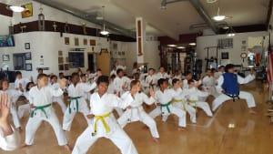 in Davie and Cooper City - Traditional Taekwon-Do Center Of Davie - A Parent's Guide for Martial Arts | Davie Martial Arts