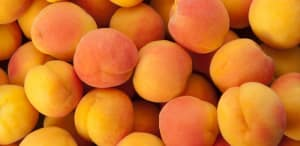 8 Health Benefits of Apricots