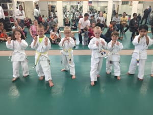 in Racine - Chay's Tae Kwon Do - Little Ninjas For Age 4-7!