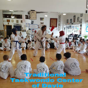 in Davie and Cooper City - Traditional Taekwon-Do Center Of Davie - Does Martial Arts Promote Violence? Read More to Find out! | Davie Martial Arts
