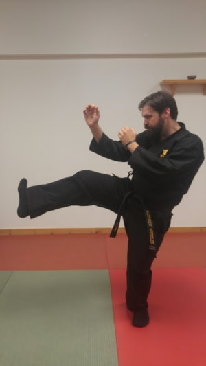 Ninja Weapon Wednesday - Stomp Kick