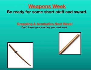 in Houston - Meyerland Martial Art Center - Weapon Week!