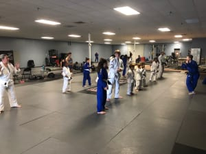 in Goose Creek - Charleston Self-Defense & MMA - Why training Judo and Jujitsu after school at Charleston Self Defense in Goose Creek Is the right choice.
