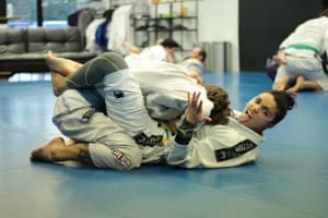 Brazilian Jiu Jitsu Positions