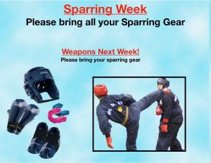 in Houston - Meyerland Martial Art Center - Sparring Week!