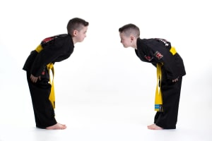 Why do We Bow in the Martial Arts