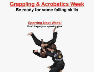 Grappling and Acrobatics Week!