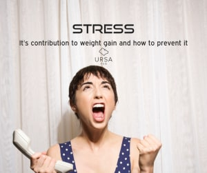 Stress, It's Contribution To Weight Gain And How To Prevent It