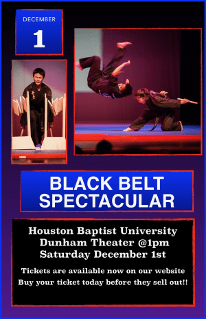 in Houston - Meyerland Martial Art Center