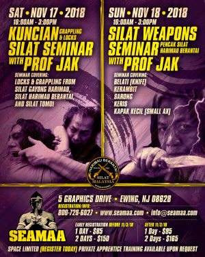Silat Weapons and Locks Seminar with Prof Jak