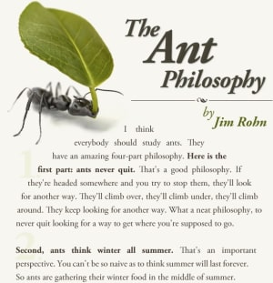 in San Bruno - Dojo USA World Training Center - 4 Pieces to The Ant Philosophy