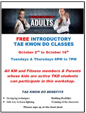 Free Workshop for adults - Taekwondo classes
