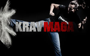 HMA is hosting a Free Intro to Krav Maga Seminar on October 13th!