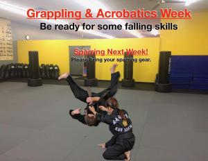 in Houston - Meyerland Martial Art Center - Grappling & Acrobatics Week!
