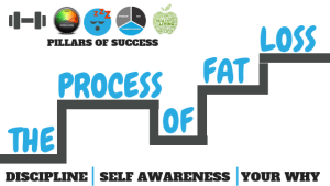 The Process of Fat Loss