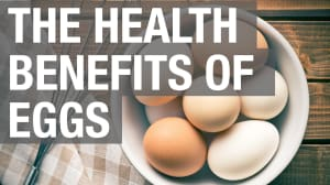 Eggs Are Incredibly Nutritious