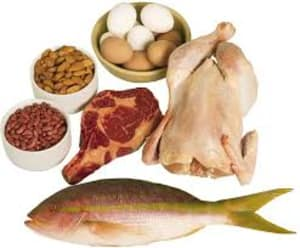 How Protein Helps You Lose Fat
