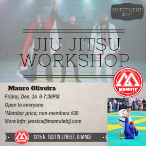 Jiu Jitsu Workshop