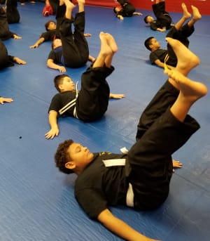 MARTIAL ARTS BREAKFALLS: Falling with Purpose